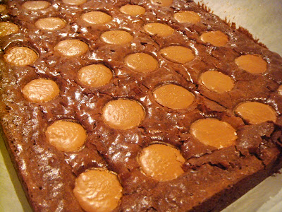Intense chocolate brownies with salted caramel puddles