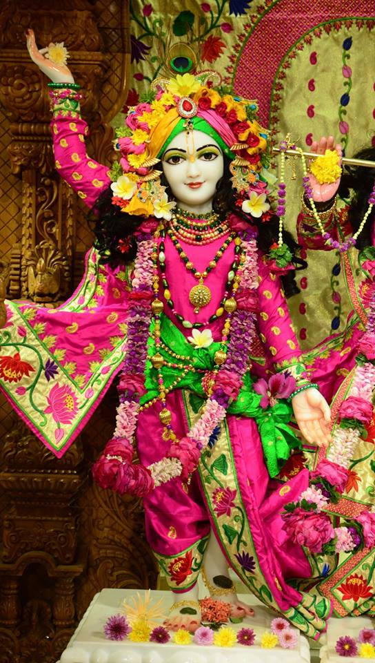 ISKCON GEV Deity Darshan 08 Jan 2017 (3)