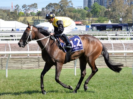 vrc sprint_in her time 2