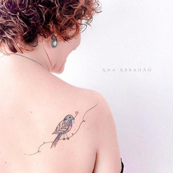 este_bonito_pouco_de_aves