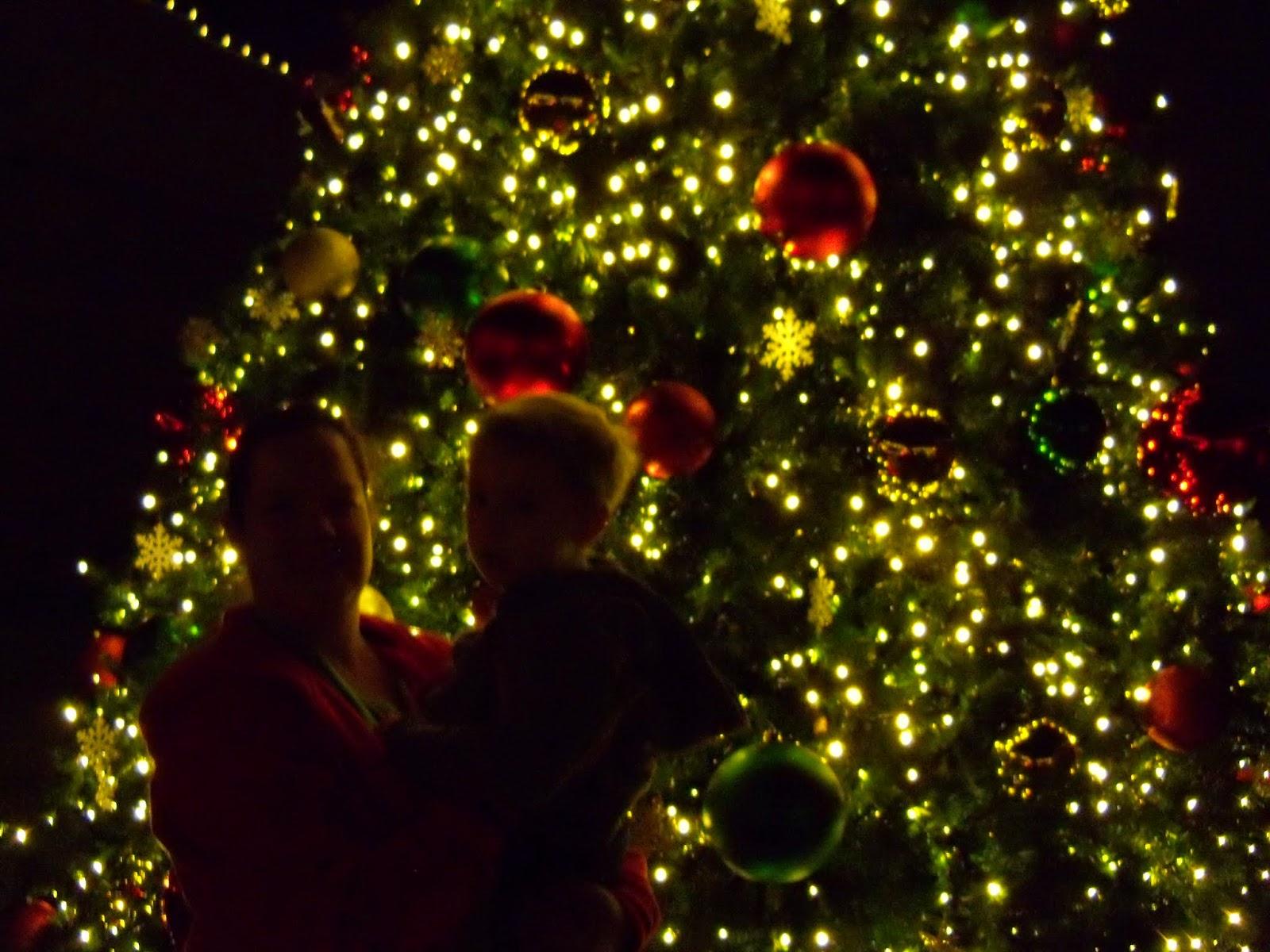 Christmastime - 116_6394.JPG