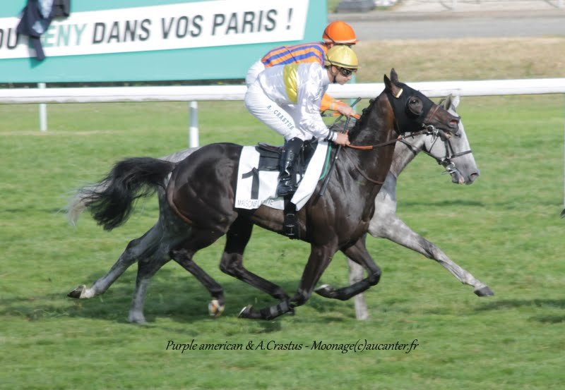 Photos Maisons-Laffitte 5-07-2015 - Page 2 IMG_2633