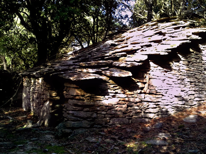 One more of the old houses under ancient holm oaks