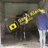 eiergooien/ponyrijden - IMG_5040.jpg