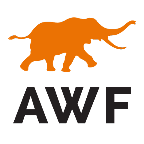 African Wildlife Foundation image