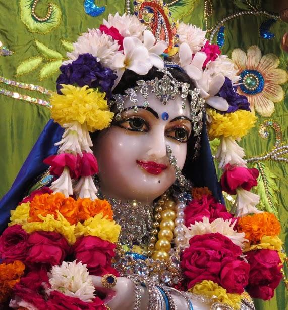 ISKCON Vallabh vidhyanagar Deity Darshan 10 jan 2017 (11)
