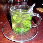 mint tea in IJmuiden, Noord Holland, Netherlands