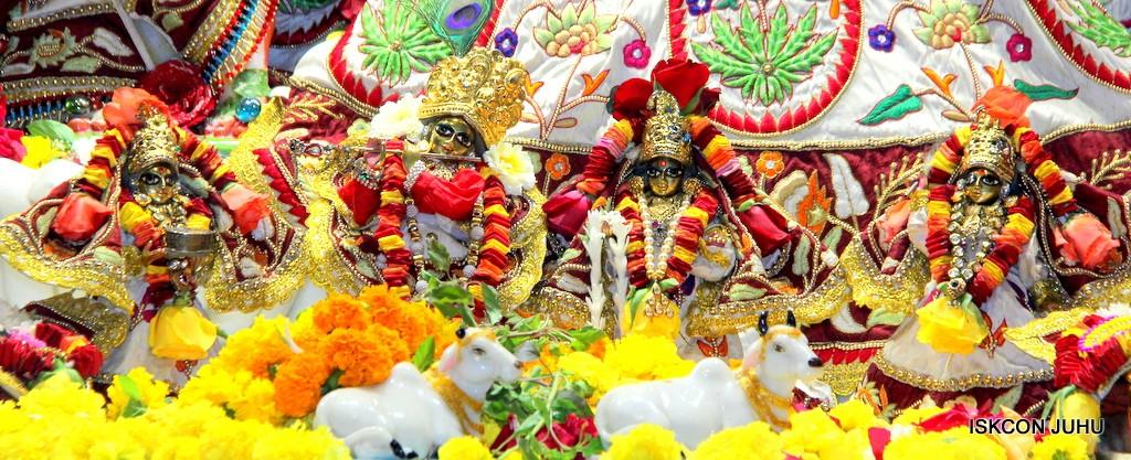 ISKCON Juhu Sringar Deity Darshan on 2nd Jan 2017 (10)