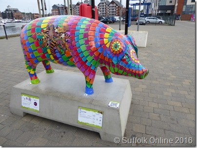 Suffolk Online - Pigs Gone Wild
