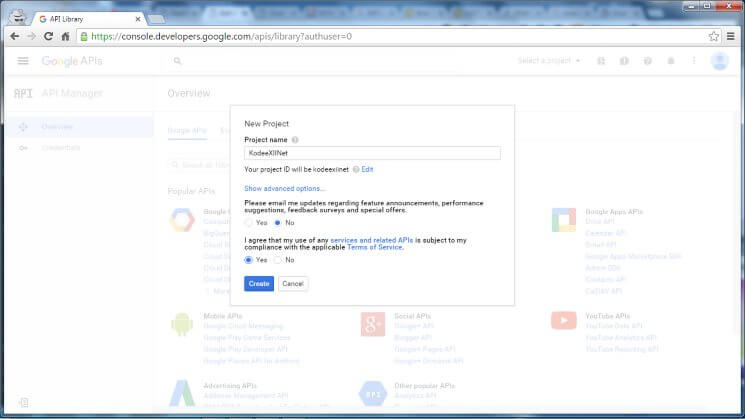 Web Push Notification Google Dev Console New Project