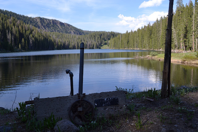 a valve labeled Forest Lake