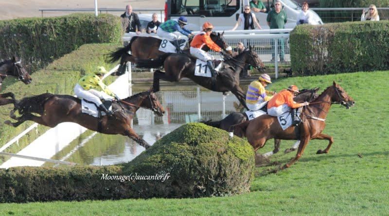 Photos Auteuil 8-11-2015 (48h de l'obstacle) IMG_7026