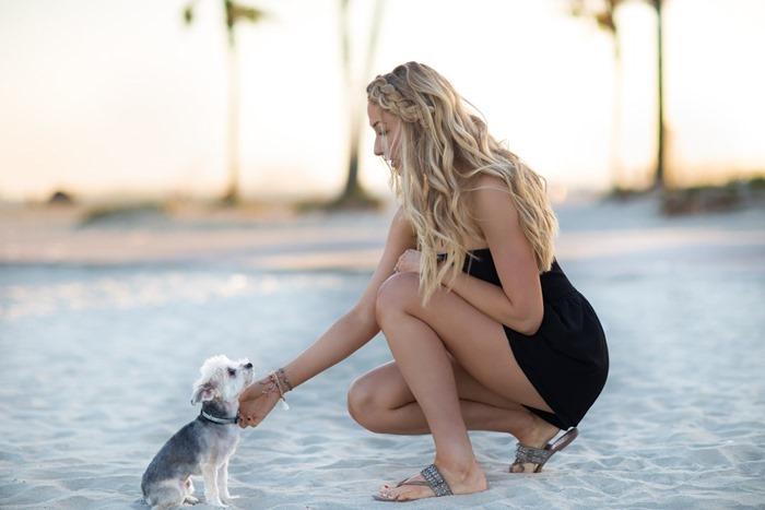 Rosies-Dog-Beach