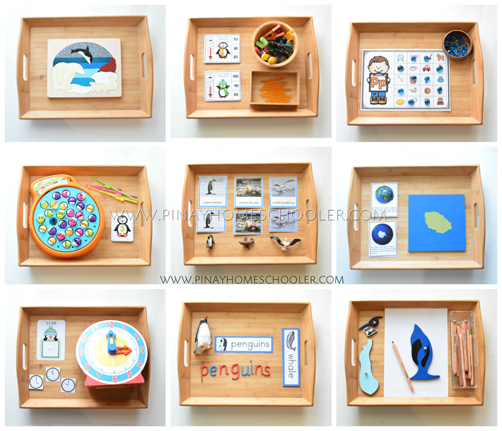 Montessori Inspired Polar Activities for Preschoolers