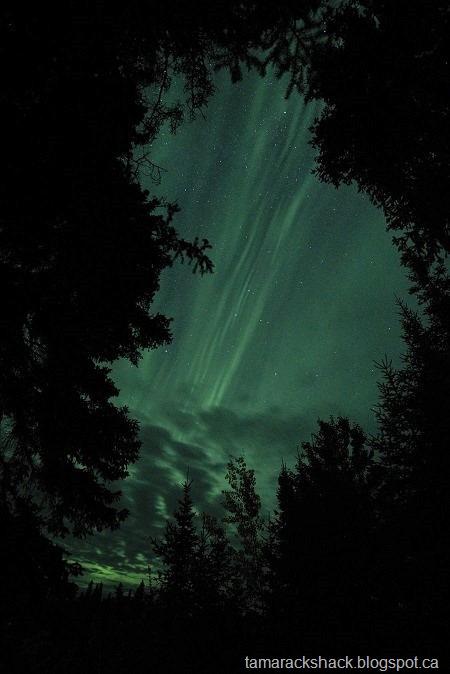 [aurora2+%282%29%5B6%5D]