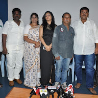 Kakatheeyudu Movie Pressmeet