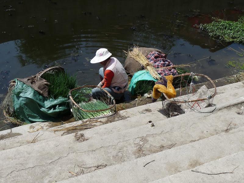 Chine. Yunnan Dali .En vélo vers le lac ERHAI - P1170742.JPG
