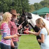 Paard & Erfgoed 2 sept. 2012 (95 van 139)