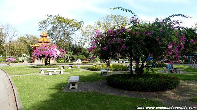 flores-lumphini-park.JPG