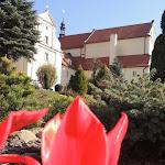 2015.04.21.,Klasztor w Ostrzeszowie, fot.s.A (100).JPG