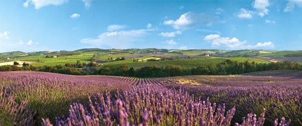 Beautiful Landscapes of France
