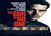 Ver The Son of No One (2011) nline