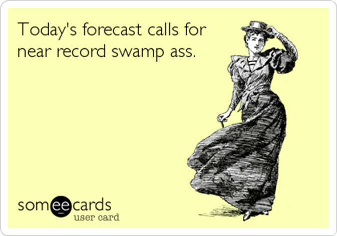 heat-wave-swamp-ass-someecards