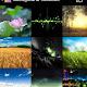 Screenshot_2013-02-26-21-31-33.jpg