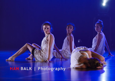Han Balk Voorster Dansdag 2016-4263.jpg