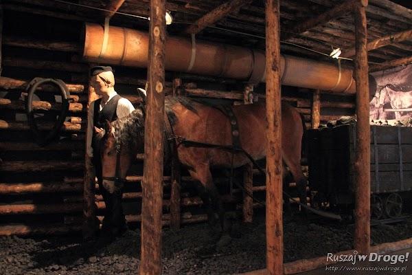 Muzeum Górnictwa Węglowego w Zabrzu - konie pracujące pod ziemią