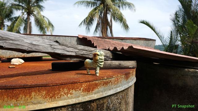 储水槽上的一只舞狮