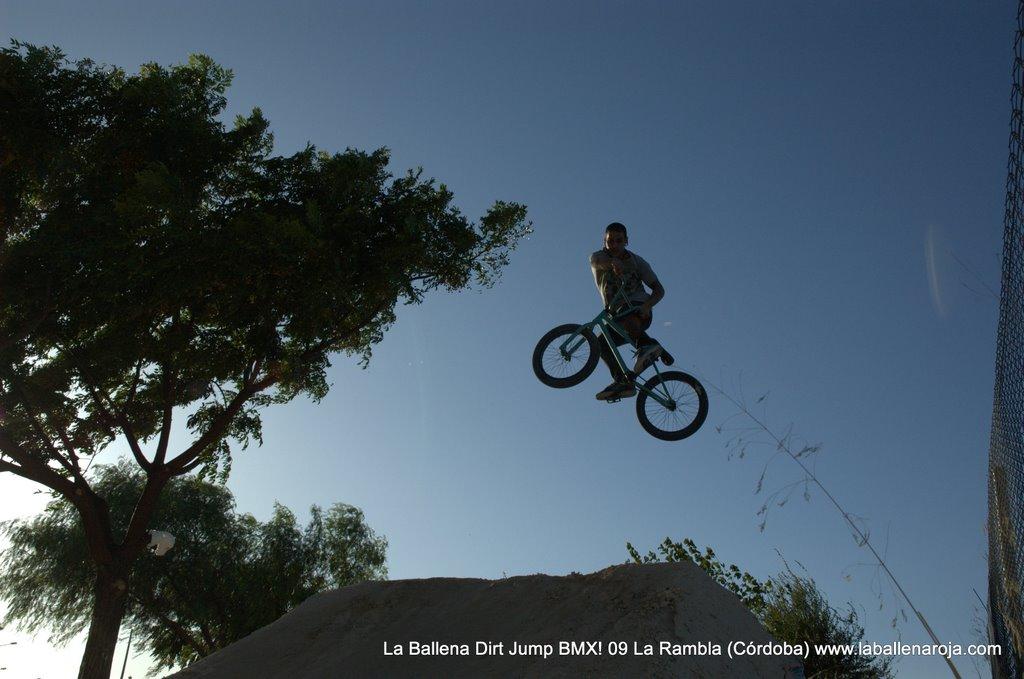 Ballena Dirt Jump BMX 2009 - BMX_09_0102.jpg