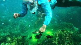 ngebolang-pulau-harapan-5-6-okt-2013-pen-21