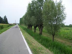 Photo: 19e Dag, maandag 3 augustus 2009 Vertrek: Verona Vertrektijd: 07.00 uur Aankomst: Ferrara Aankomst: 18.00 uur Temp.maximum: graden, Wind: 2 Bfr, Windrichting: z.w. Weerbeeld: warm, zonnig. Afstand totaal: 136,7 km, Tijd: 9:14:51 uur, Gemiddelde: 14.7 ODO totaal: 1535 km De povlakte.
