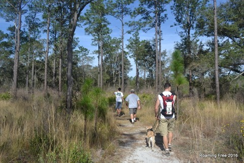 Gopher Tortoise Trail