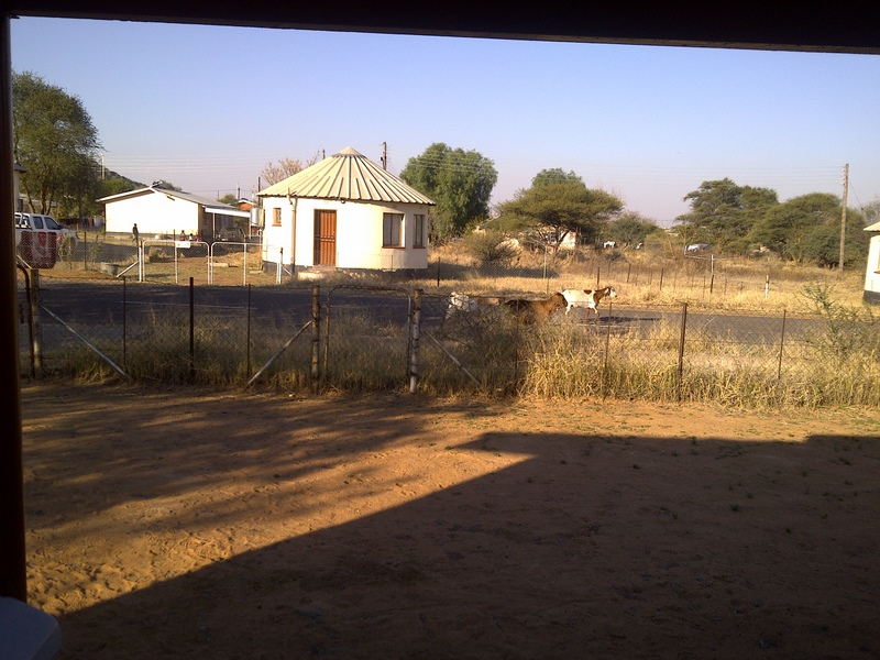 view from our front porch, note the goats walking down the street