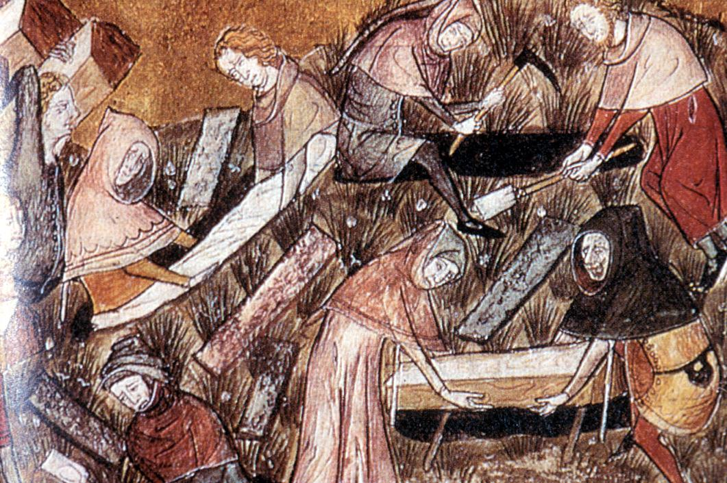 Palaeontology: Ice core evidence suggests famine worsened Black Death