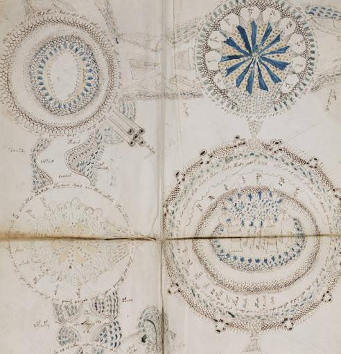 semi femi the voynich manuscript