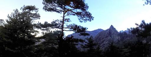Derrière nous, depuis le départ, vue permanente sur le Monte Saltare...