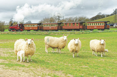 Winter Warmers on the Llanfair Line