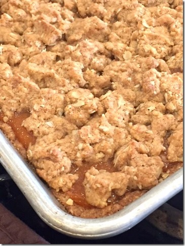 Gluten Free Apricot Betty Bars