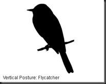 ID_Posture_v_1