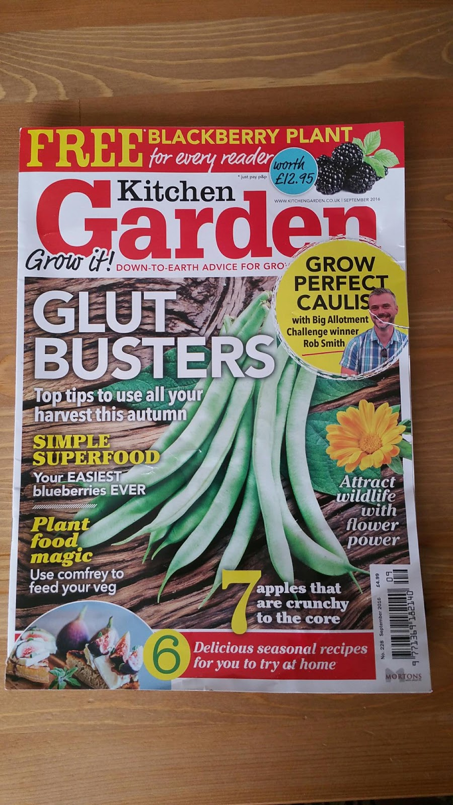 Kitchen Gardener Magazine September Kitchen Garden Free Book Fast Blog Family Homestead