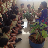 Day activities for Pre-Primary - Gardening on 27th October 2015.