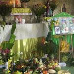 Festiva Oxossi 2012