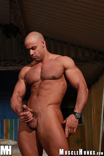 Vid Diesel Gay 49