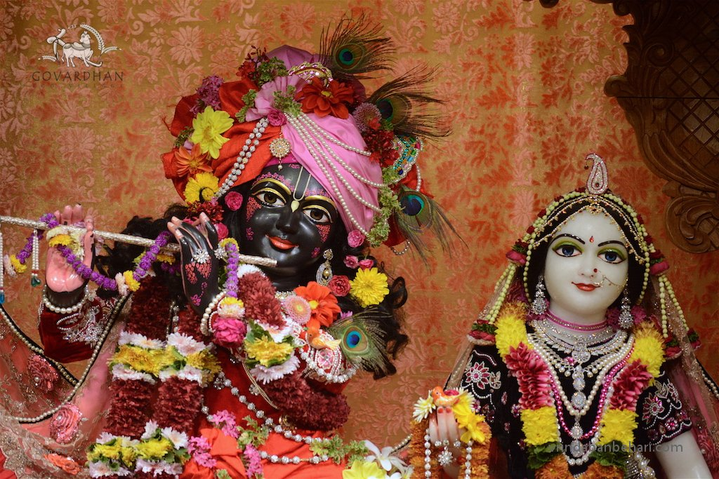 ISKCON GEV (Wada) Deity Darshan 26 Jan 2016  (8)