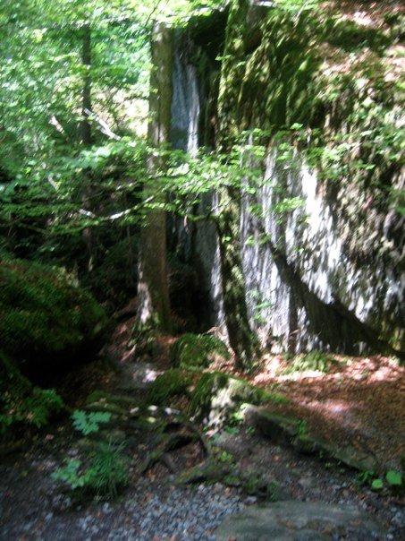 Campaments a Suïssa (Kandersteg) 2009 - n1099548938_30614153_3619267.jpg
