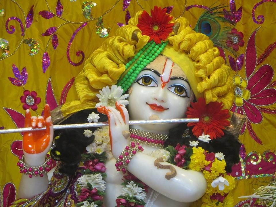 ISKCON Aravade Deity Darshan 17 May 2016 (4)