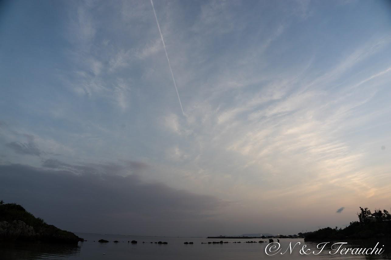 薄っすらと朝の光に染まり始めた空